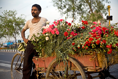 India - New Delhi - A 'phool wallah' (or flower seller) delivering flowers on tricycle, Mehrauli
