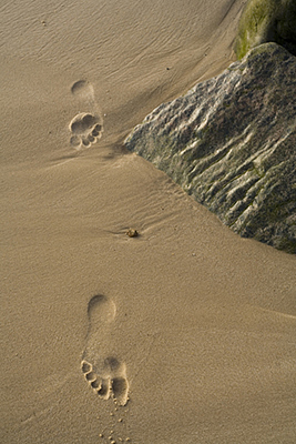 Uk - Happisburgh - Footprints in the sand on the beach