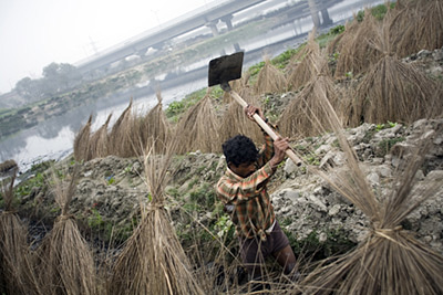 India - Delhi - A man cultivates land by the Yamuna River in Delhi by the Kudsia Ghat.